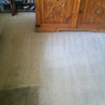 Bedroom-Carpet-Cleaning