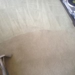 Carpet-Cleaning-Sunnyvale