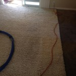 Sunnyvale-Traffic-Area-carpet-cleaners