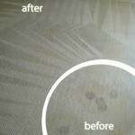 Sunnyvale-Wine-Stain-Carpet-Cleaning